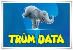 trum-data-FV99-FV119